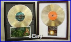 Blank Gold LP Album Record Award Custom CD/ DVD Display